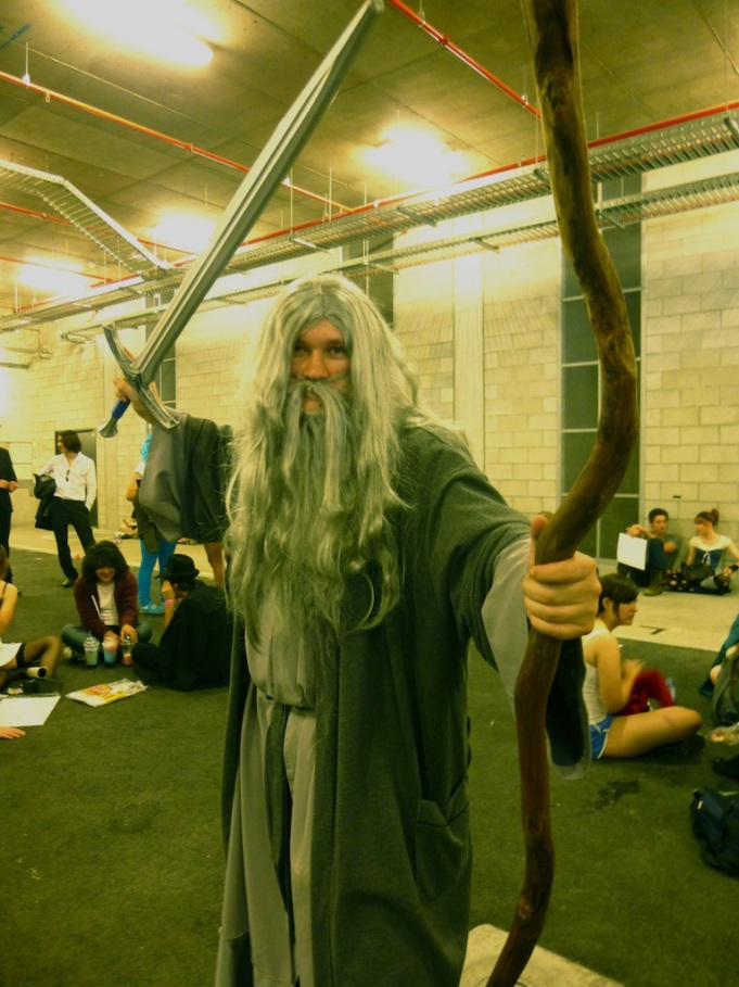 Gandalf the Grey, The Lord of the Rings.